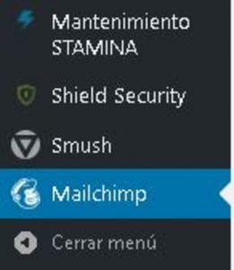 configurar-mailchimp-en-español
